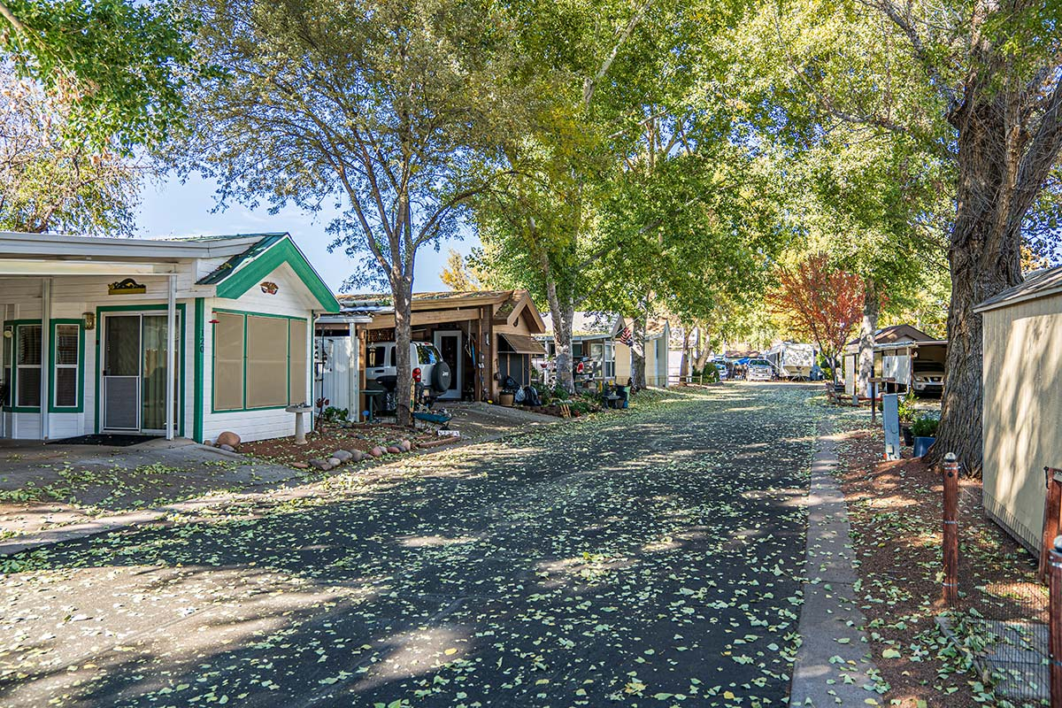Lamplighter RV Resort & Park's shady tree-lined streets