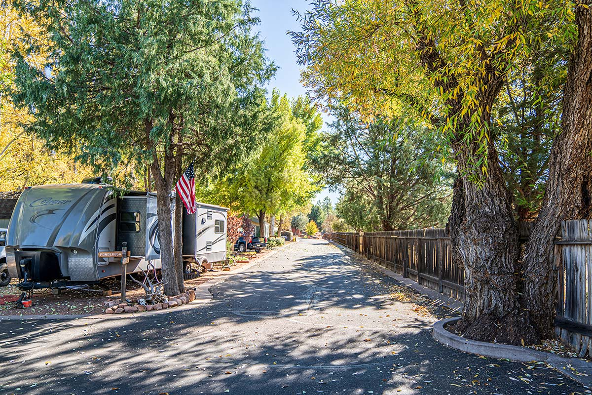 Trees offers lots of shade throughout Lamplighter RV Resort & Park